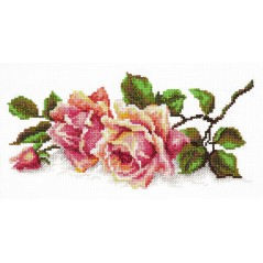 Cross Stitch Kit Aromas of rose art. 40-48