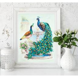 Cross Stitch Kit Peacock art. 130-001