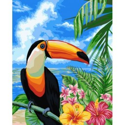 PAINT BY NUMBERS KIT TOUCAN 40X50 CM H080