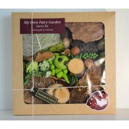 My Own Fairy Garden Baby Dragon-Starter Kit