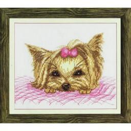 Cross Stitch Kit Yorkshire Terrier M-240