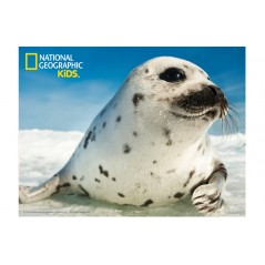 SEAL SUPER 3D PUZZLE 63 PIECES NATIONAL GEOGRAPHIC