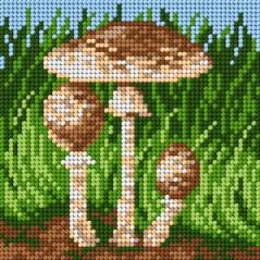 TAPESTRY CANVAS Mushrooms 15x15cm 2203D