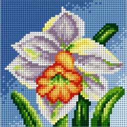 TAPESTRY CANVAS Daffodil 15x15cm 2441D