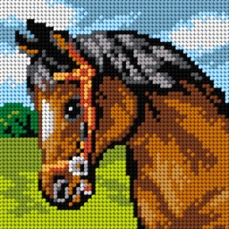 TAPESTRY CANVAS Horse 15x15cm 2779D