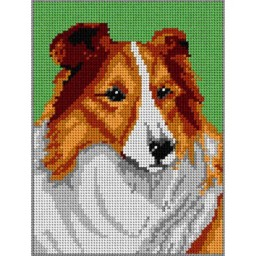 TAPESTRY CANVAS Collie 18x24cm 1238F