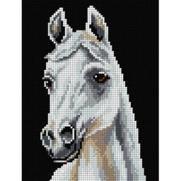 TAPESTRY CANVAS White horse 18x24cm 2696F