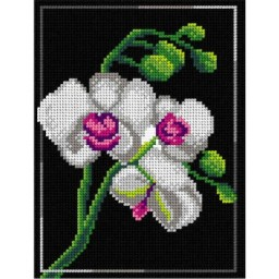 TAPESTRY CANVAS Orchid 18x24cm 3010F