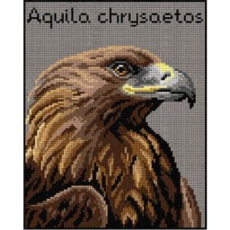 TAPESTRY CANVAS Golden Eagle 24X30cm 3011H