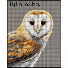 TAPESTRY CANVAS Barn Owl 24X30cm 3014H