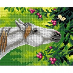 TAPESTRY CANVAS Horse and Butterfly 24X30cm 3112H