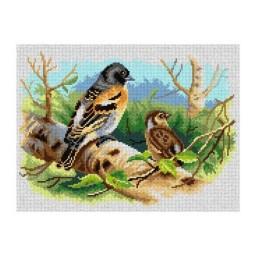 TAPESTRY CANVAS Birds of British Islands 30X40cm 3065J