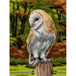TAPESTRY CANVAS Bart Owl 30X40cm 3131J