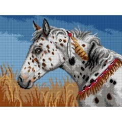 TAPESTRY CANVAS Appaloosa Horse 30X40cm 3193J