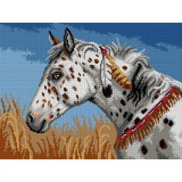 TAPESTRY CANVAS Appaloosa Horse 30X40cm 3193J
