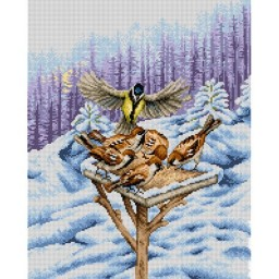 TAPESTRY CANVAS Winter Feeder 40X50cm 2284M