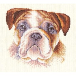 Cross Stitch Kit English Bulldog J-1056