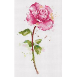 Cross Stitch Kit Watercolour Rose C-7190