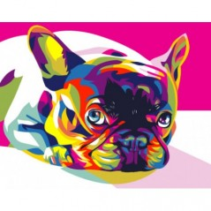 PAINT BY NUMBERS KIT RAINBOW FRENCH BULLDOG 40 x 50 cm. T40500080 Framed