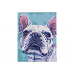 PAINTING BY NUMBERS KIT BULLDOG T16130070