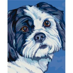 PAINTING BY NUMBERS SHIH TZU T16130077 (Discontinued)