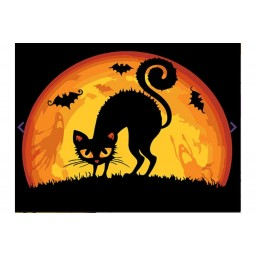 PAINTING BY NUMBERS HALLOWEEN CAT T16130050