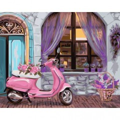 PAINT BY NUMBERS KIT FRENCH BOUTIQUE 40X50 CM A088 Framed