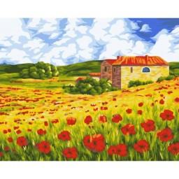 PAINT BY NUMBERS KIT POPPY MEADOW 40X50 CM A091