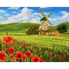 PAINT BY NUMBERS KIT SWISS FIELDS 40X50 CM A099 Framed