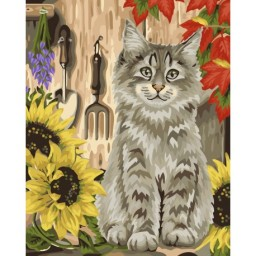 PAINT BY NUMBERS KIT KITTEN AND SUNFLOWERS 40X50 CM H058 Framed Pre-order