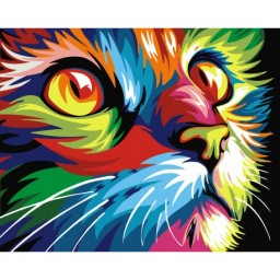 PAINTING BY NUMBERS RAINBOW CAT 40X50 CM S066