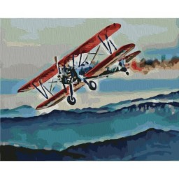 PAINTING BY NUMBERS KIT FLIGHT 40X50 CM T40500318