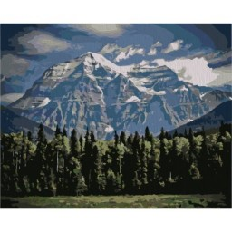 PAINTING BY NUMBERS KIT MOUNTAINS 40X50 CM T40500327