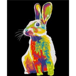 PAINTING BY NUMBERS RAINBOW RABBIT 50X40CM T50400162