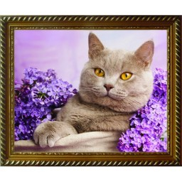 DIAMOND PAINTING KIT CAT IN THE LILAC AZ-1417 Pre-order only