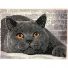 DIAMOND PAINTING KIT BRITISH CAT AZ-1463