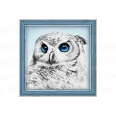 DIAMOND PAINTING KIT OWL SIGHT AZ-1549