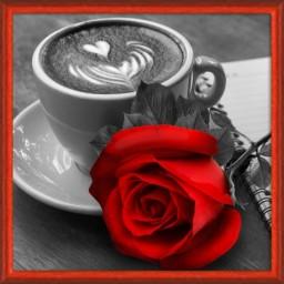 DIAMOND PAINTING KIT ROSE AND COFFEE AZ-1773