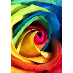 DIAMOND PAINTING KIT RAINBOW ROSE WD023