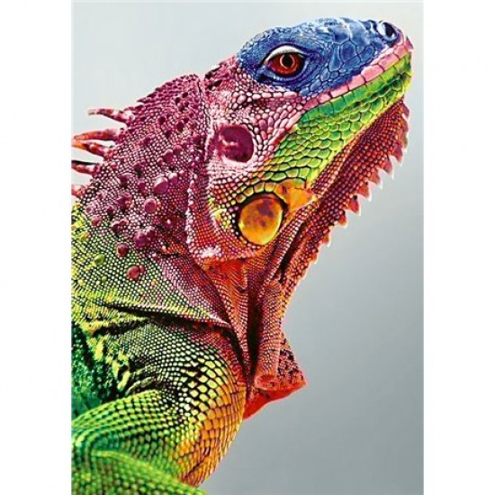 DIAMOND PAINTING KIT IGUANA WD065