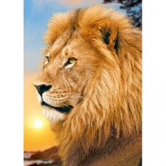DIAMOND PAINTING KIT LION KING WD070
