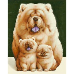 DIAMOND PAINTING KIT FLUFFY FAMILY WD187