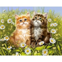 DIAMOND PAINTING KIT SUMMER KITTENS WD209