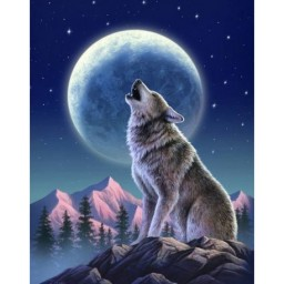 DIAMOND PAINTING KIT MOON GUARDIAN WD2348