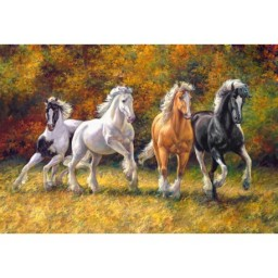 DIAMOND PAINTING KIT GALLOP WD2388 Pre-order