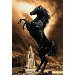 DIAMOND PAINTING KIT STRONG HORSE WD2391 Pre-order