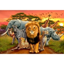DIAMOND PAINTING KIT AFRICAN BEASTS WD2403 Pre-order