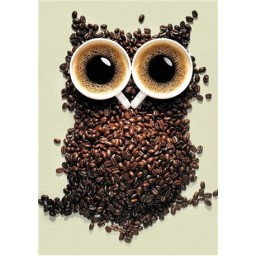 DIAMOND PAINTING KIT COFFEE OWL WD242
