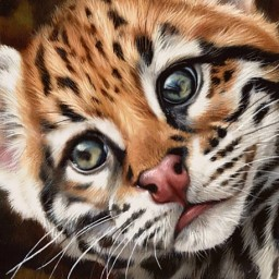DIAMOND PAINTING KIT OCELOT KITTEN WD2427 Pre-order only