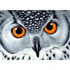 DIAMOND PAINTING KIT OWL'S LOOK WD243